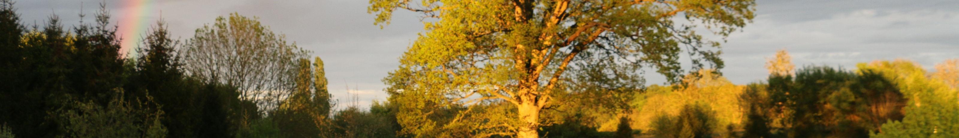 Pays de Bray avec ciel mena?ant et arc en ciel